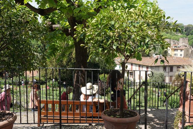 フィレンツェの庭園、バラ園