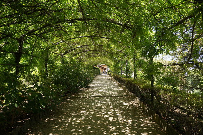 フィレンツェの庭園、バルディーニ庭園